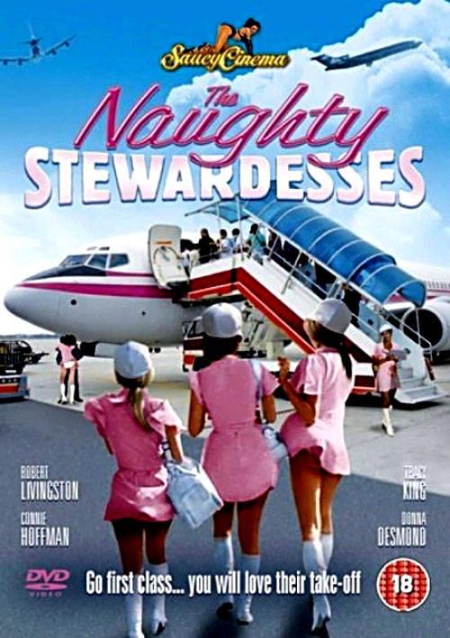 Скачать фильм Непослушные стюардессы (The Naughty Stewardesses