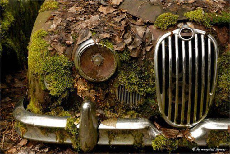 Cmentarzysko samochodów 12