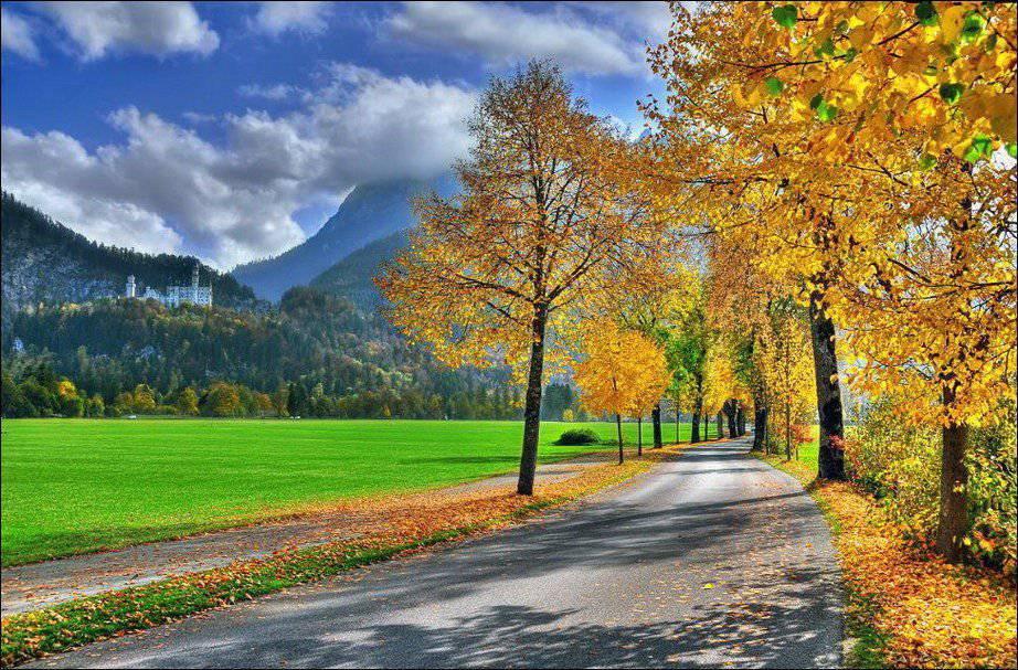 Barwy jesieni #2 35