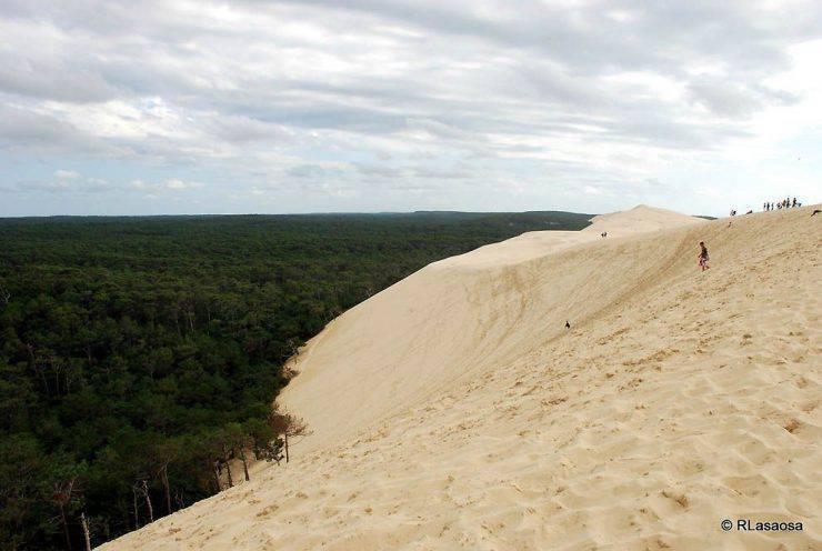 Wielka wydma Piłata 7