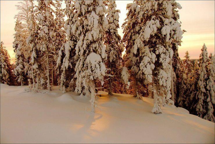 Zimowe krajobrazy 18