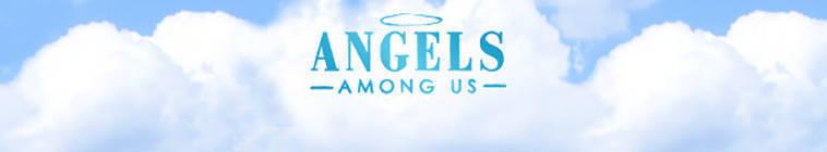 Angels Among Us 2014 S01E10 HDTV x264-W4F