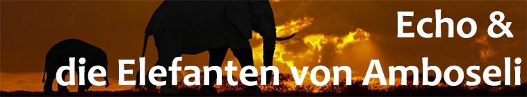 Echo And The Elephants Of Amboseli S01E11 XviD-AFG