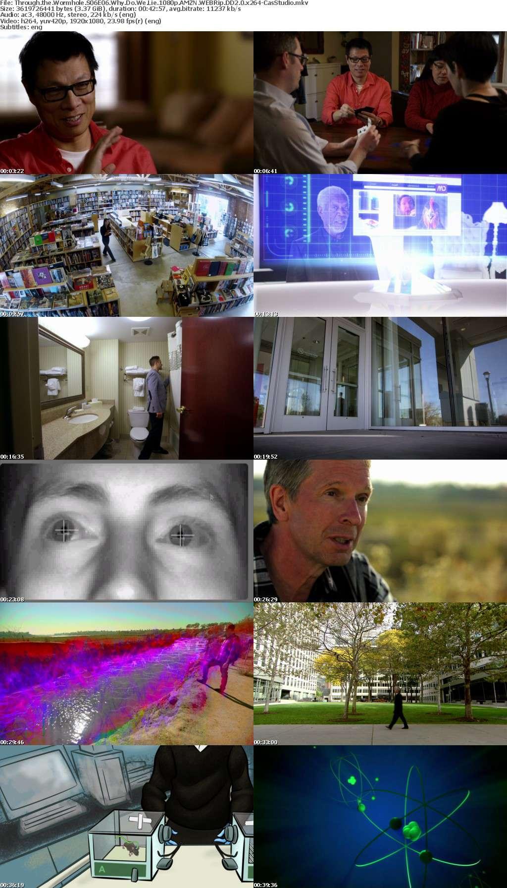 Through the Wormhole S06 1080p AMZN WEBRip DD2 0 x264-CasStudio (2)