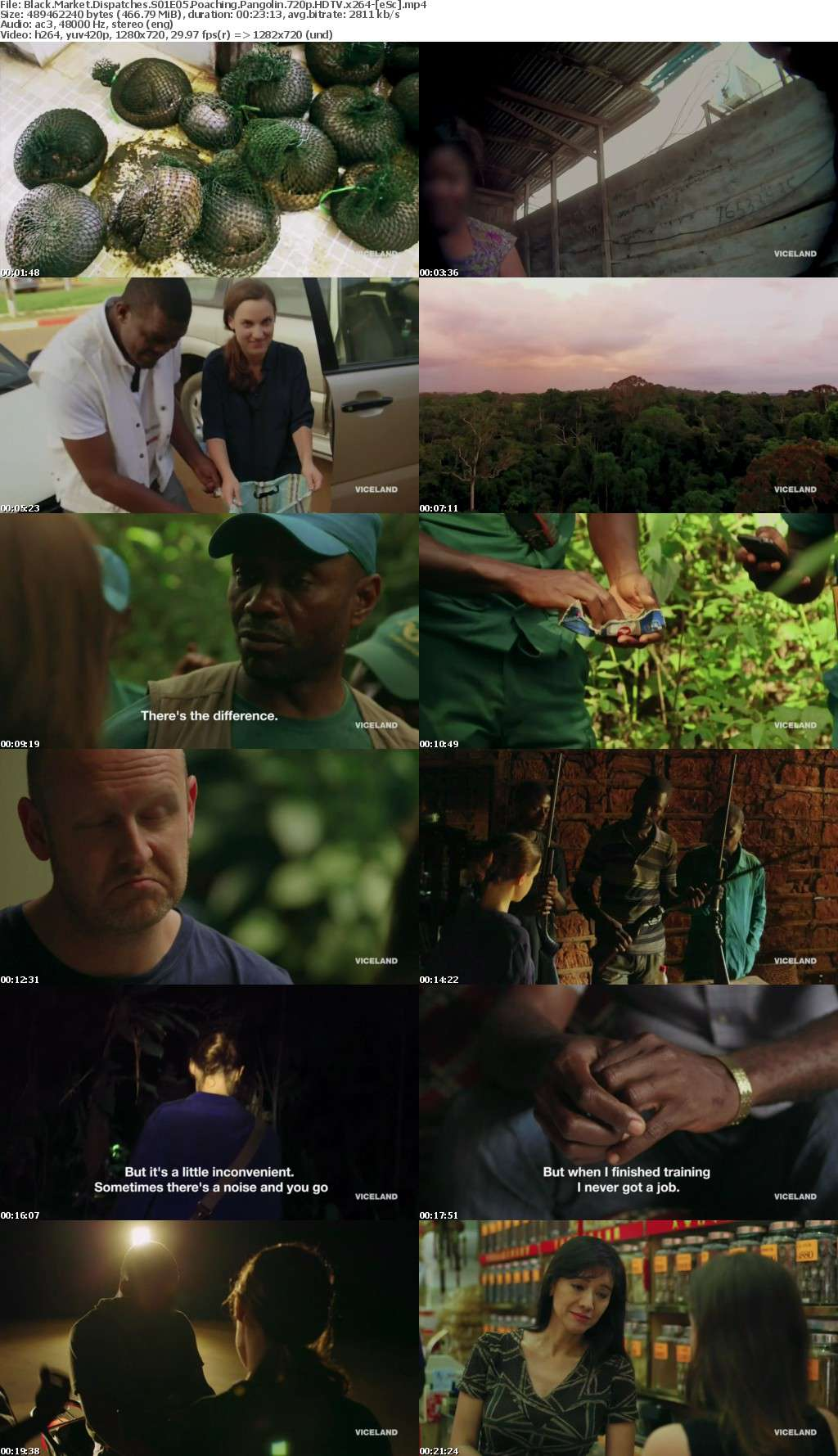Black Market Dispatches S01E05 Poaching Pangolin 720p HDTV x264-[eSc]