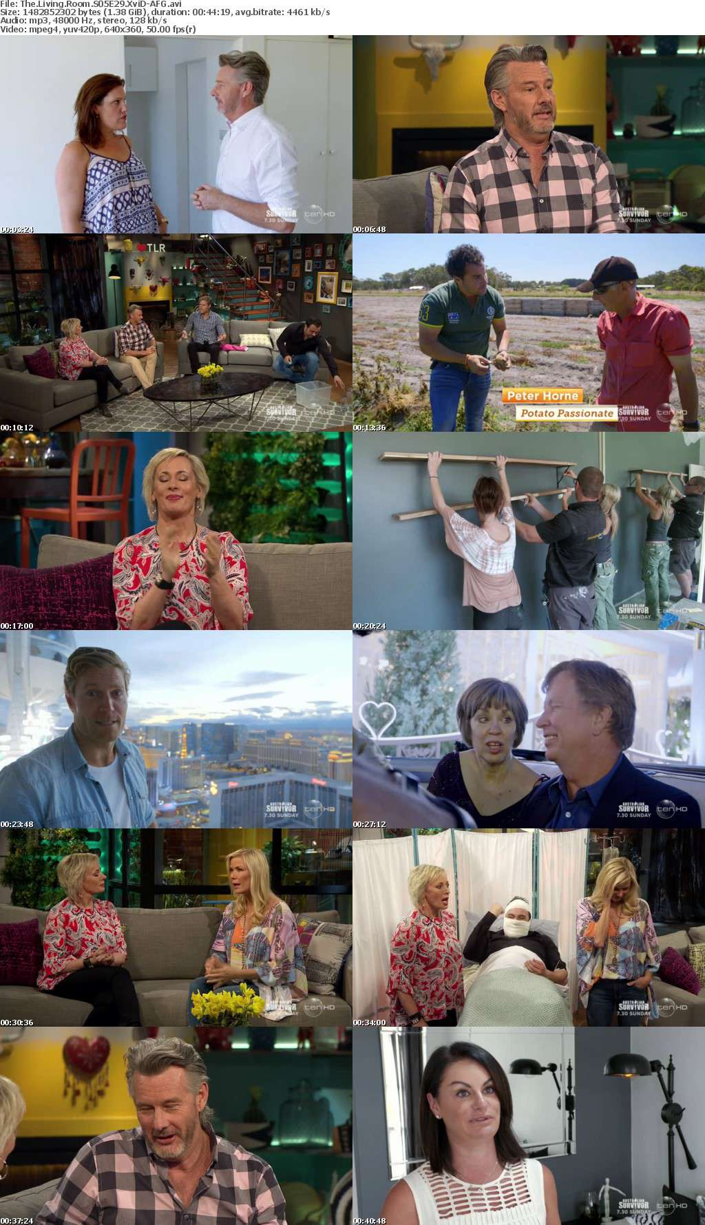 The Living Room S05E29 XviD-AFG