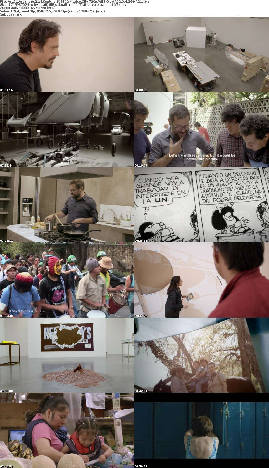Art 21 Art in the 21st Century S08E02 Mexico City 720p WEB-DL AAC2 0 H 264-A21
