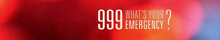 999 Whats Your Emergency S03E11 720p HDTV x264-BARGE