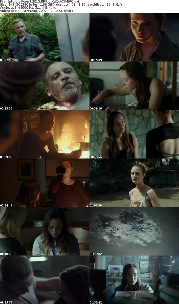 Into the Forest 2015 BRRip XviD AC3-EVO