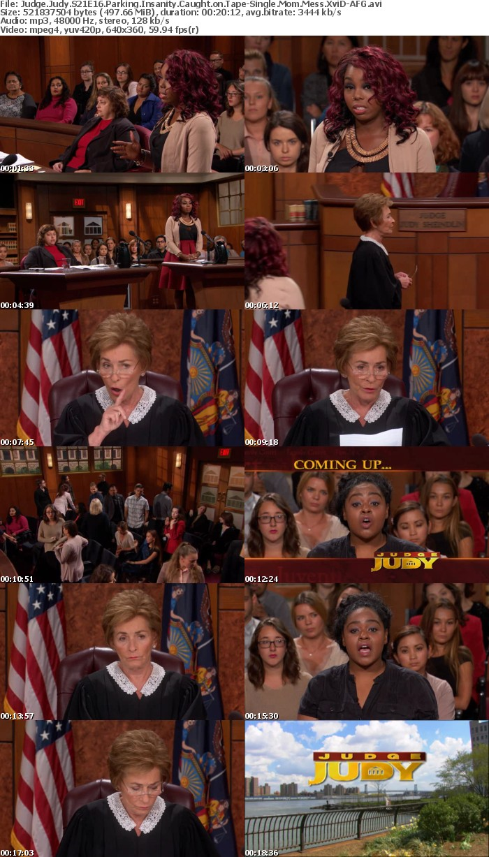 Judge Judy S21E16 Parking Insanity Caught on Tape-Single Mom Mess XviD-AFG