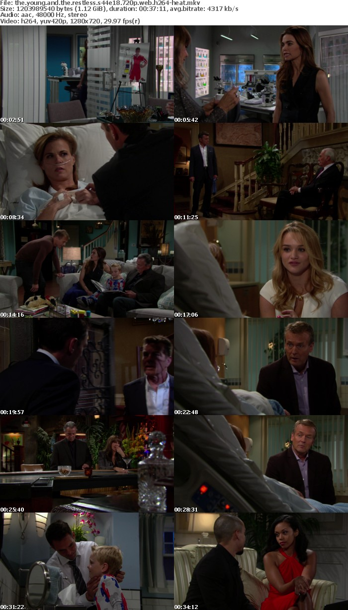 The Young and the Restless S44E18 720p WEB h264-HEAT