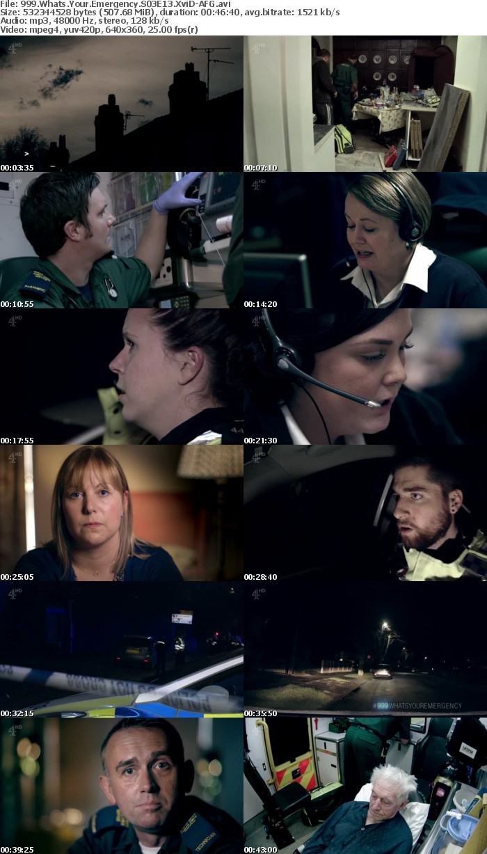 999 Whats Your Emergency S03E13 XviD-AFG