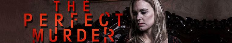 The Perfect Murder S03E12 720p HDTV x264-W4F