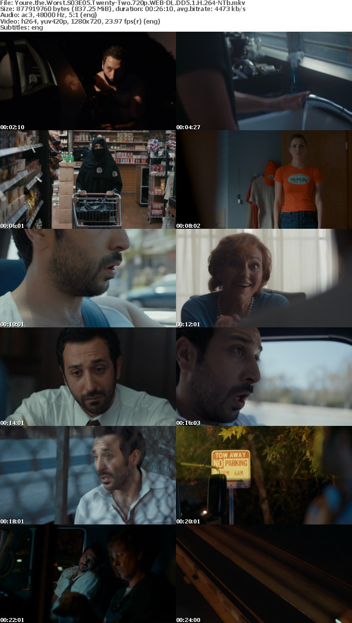 Youre the Worst S03E05 Twenty Two 720p WEB DL DD5 1 H 264 NTb