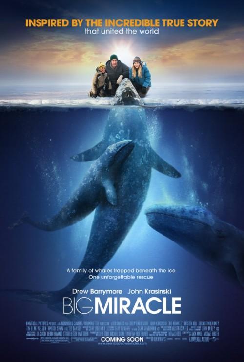 Big Miracle 2012 720p BluRay x264-x0r Big Miracle (2012)