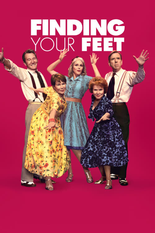 Finding Your Feet 2017 1080p WEB-DL DD5 1 H264-CM