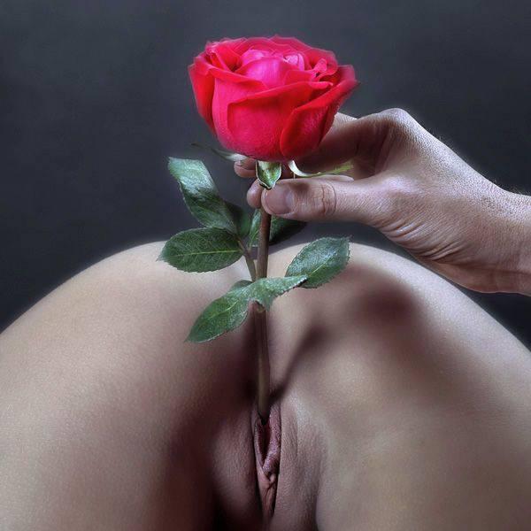 розы секс картинка