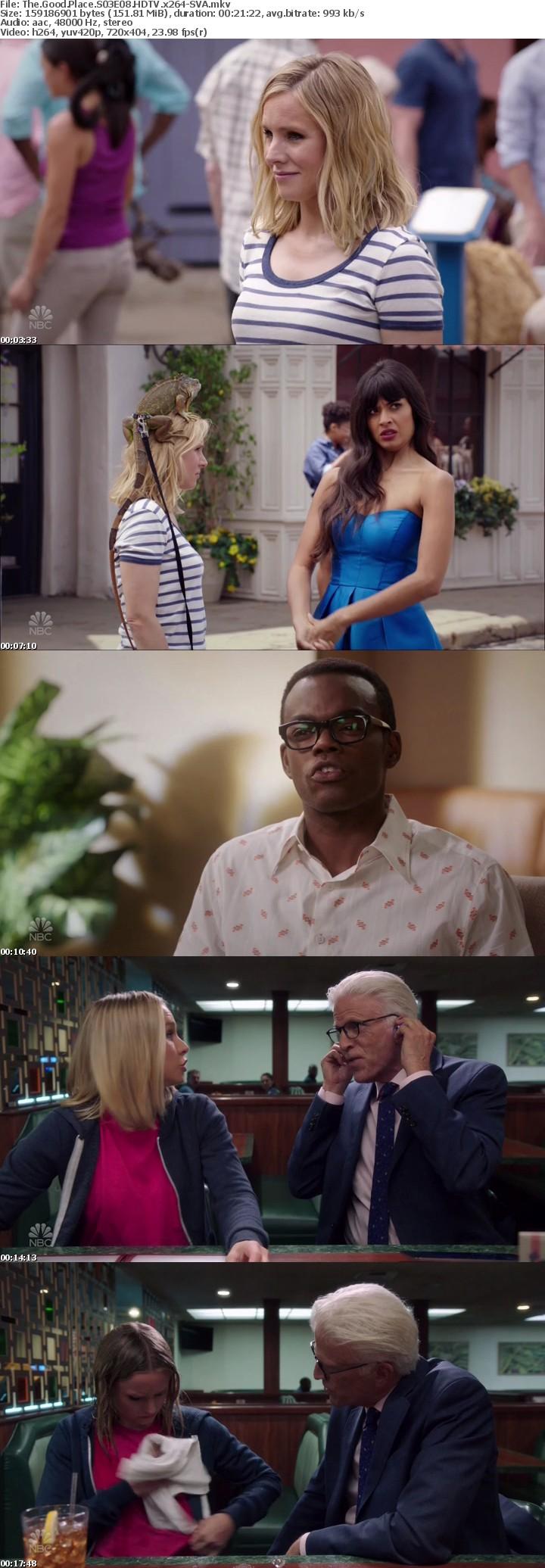 The Good Place S03E08 HDTV x264-SVA