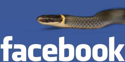153688882dfee805b2f5a36f7822dd286d3230c0 Virus Facebook Mengganas, 45.000 Akun Dibajak