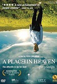 A Place in Heaven 2013 RERIP DVDRip x264-BiPOLAR
