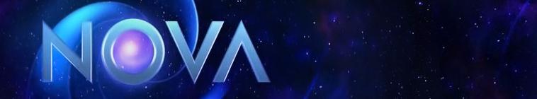 NOVA S23E11 Einstein Revealed PBS WEB-DL AAC2 0 H 264