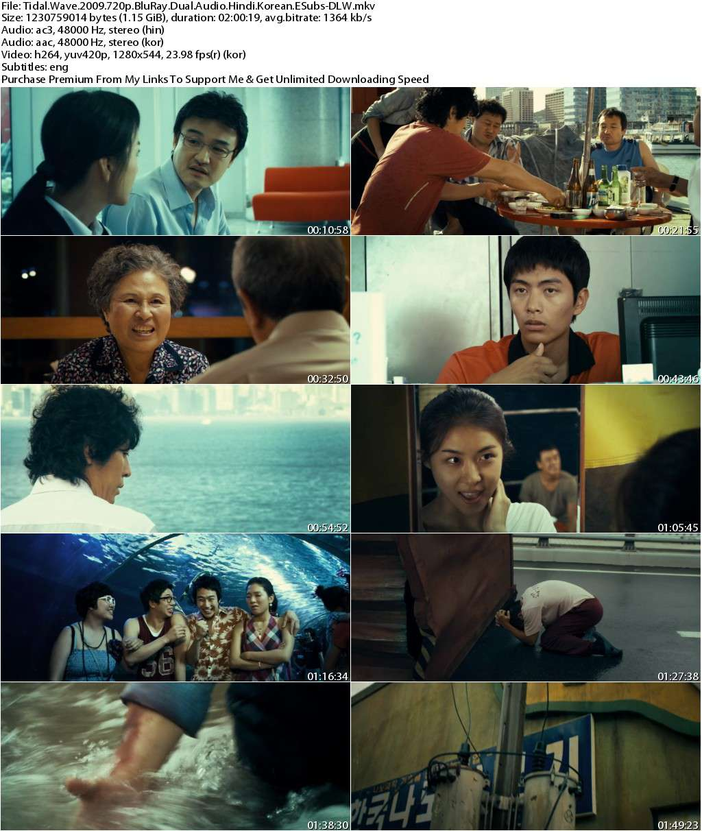 Tidal Wave (2009) 720p BluRay Dual Audio [Hindi+Korean] ESubs-DLW