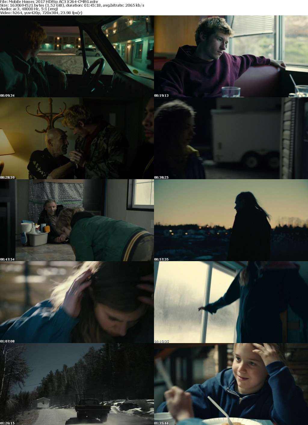 Mobile Homes (2017) HDRip AC3 X264-CMRG