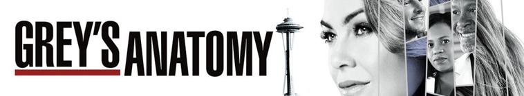 Greys Anatomy S14E17 MULTi 1080p HDTV x264-SRiZ
