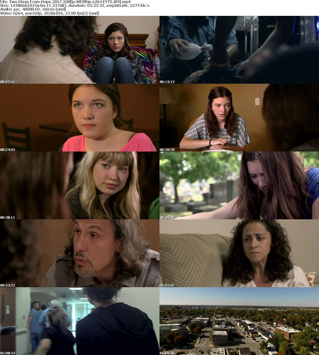 Two Steps from Hope (2017) [WEBRip] [1080p] YIFY
