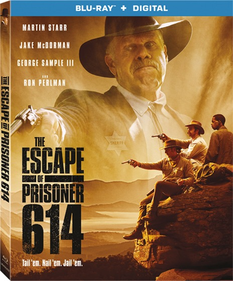 The Escape of Prisoner 614 (2018) 1080p BluRay x264-DLW