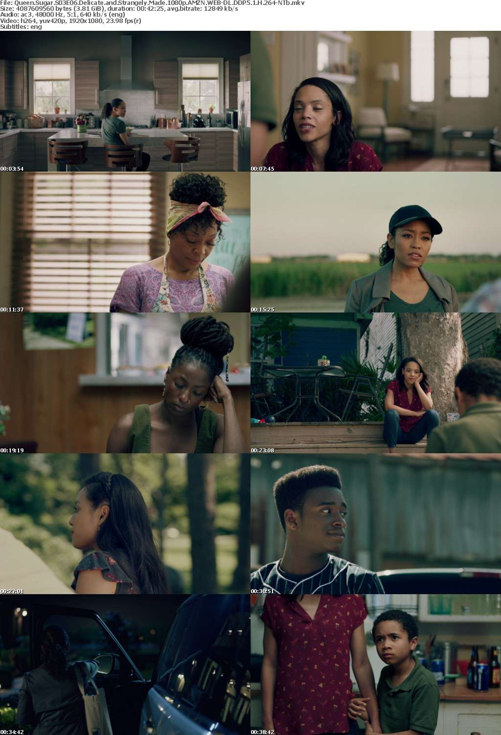 Queen Sugar S03E06 Delicate and Strangely Made 1080p AMZN WEB-DL DDP5 1 H 264-NTb