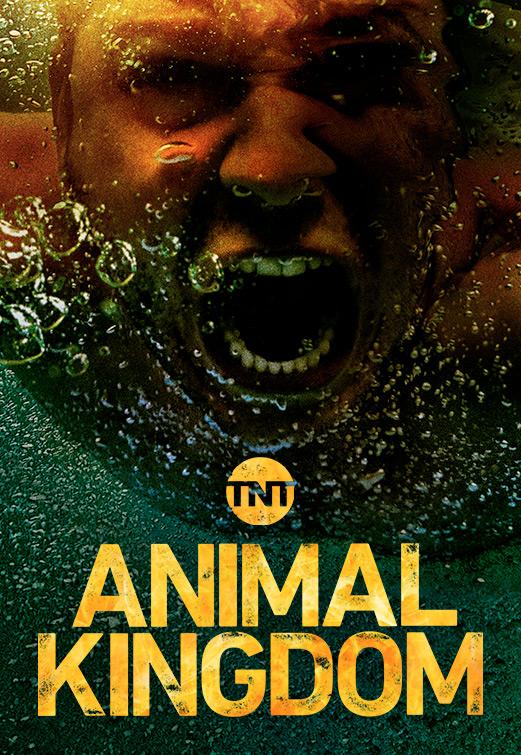 Animal Kingdom US S03E08 720p WEBRip x264-TBS