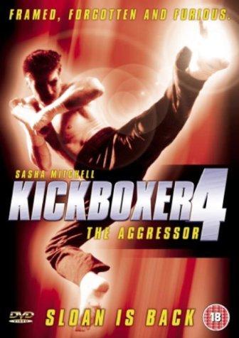 Kickboxer 4 The Aggressor 1994 BRRip XviD MP3-XVID