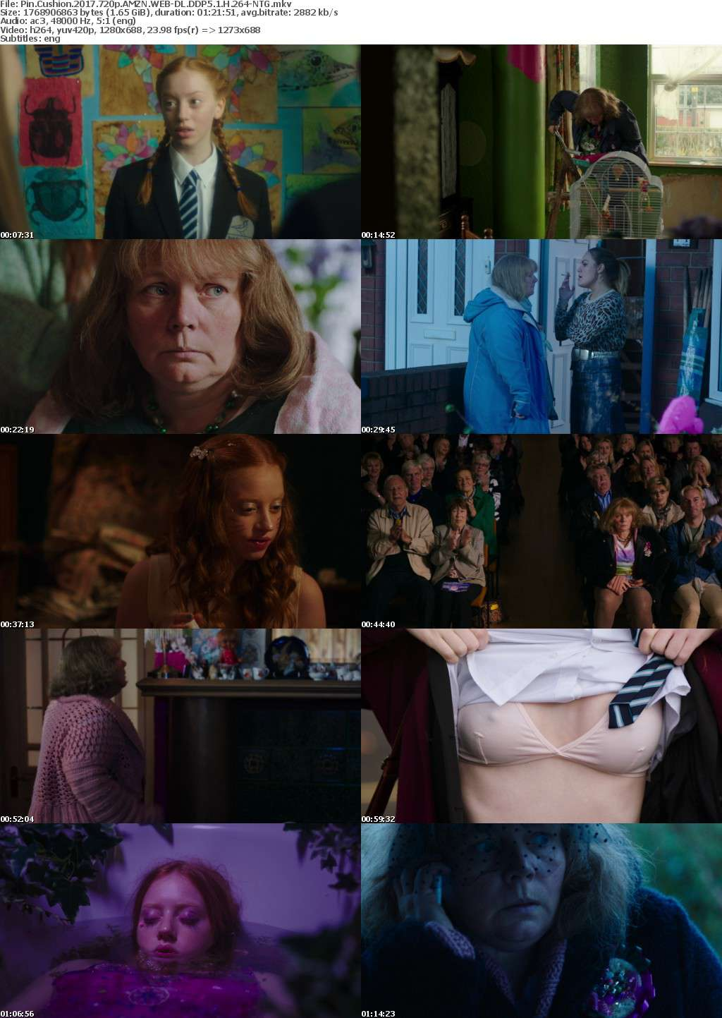 Pin Cushion (2017) 720p AMZN WEB-DL DDP5.1 H264-NTG