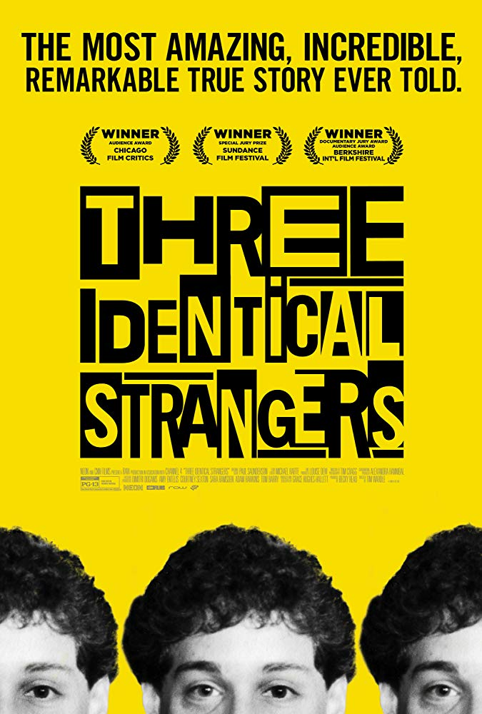 Three Identical Strangers 2018 BDRip x264-ROVERS