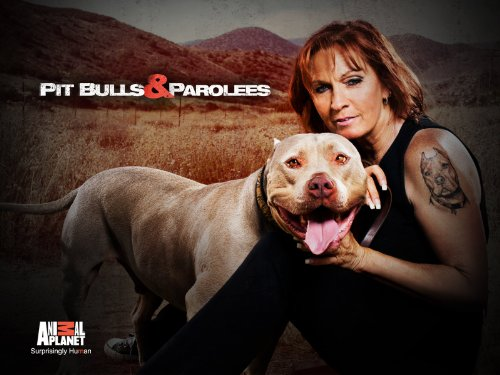 Pit Bulls and Parolees S12E03 Never Let Go WEB x264-CAFFEiNE