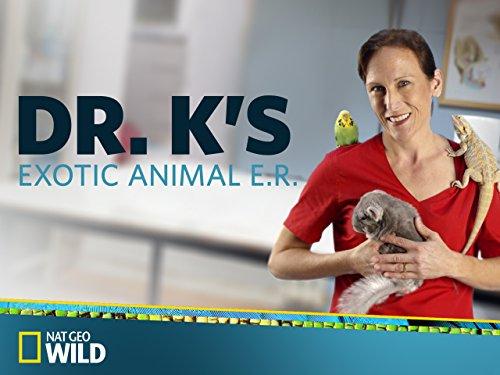 Dr Ks Exotic Animal ER S06E08 Silly Rabbit 720p WEB x264-CAFFEiNE