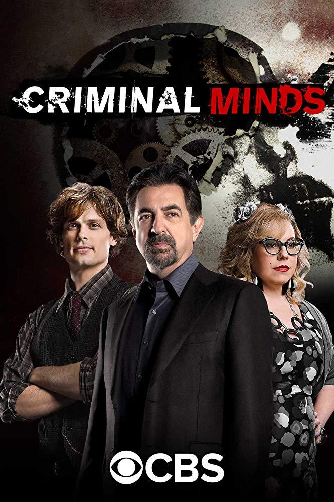 Criminal Minds S14E05 720p HDTV x265-MiNX