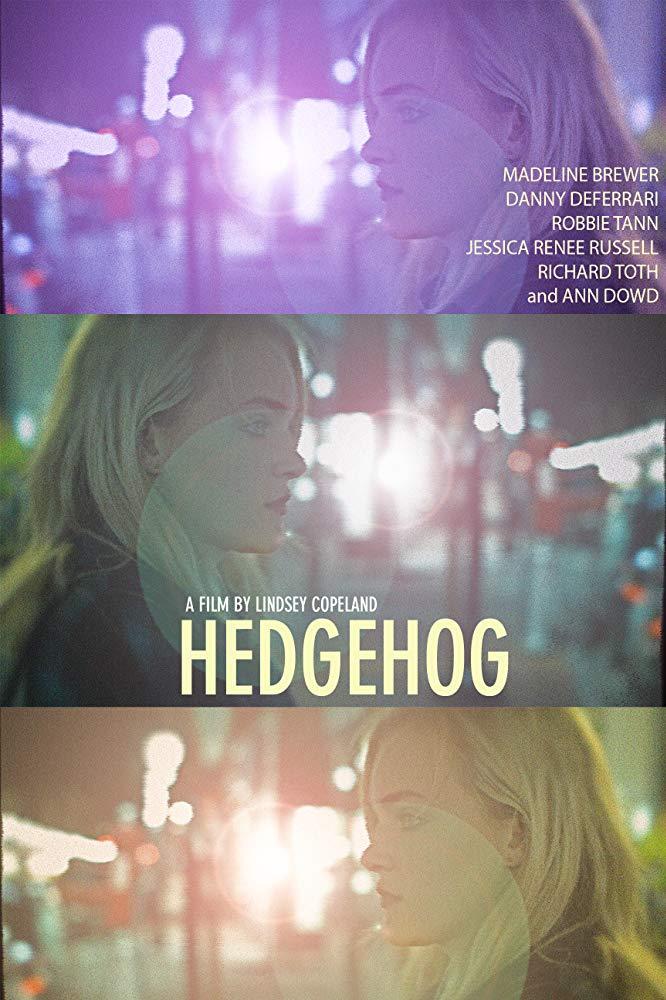 Hedgehog 2017 AMZN WEBRip AAC2 0 x264-NTG