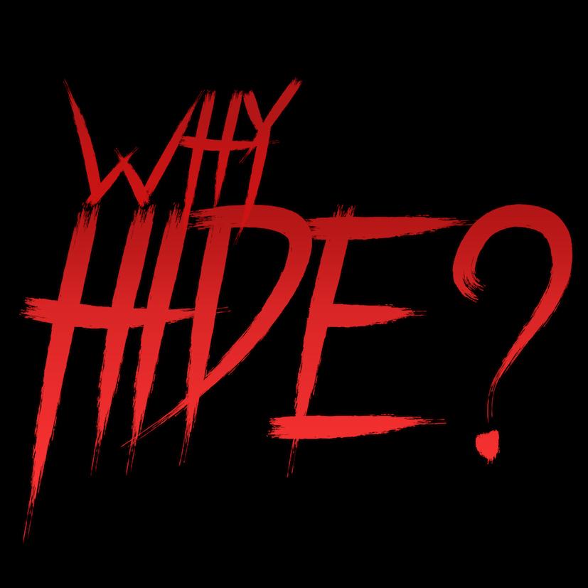 Why Hide 2018 HDRip XviD AC3-EVO[TGx]
