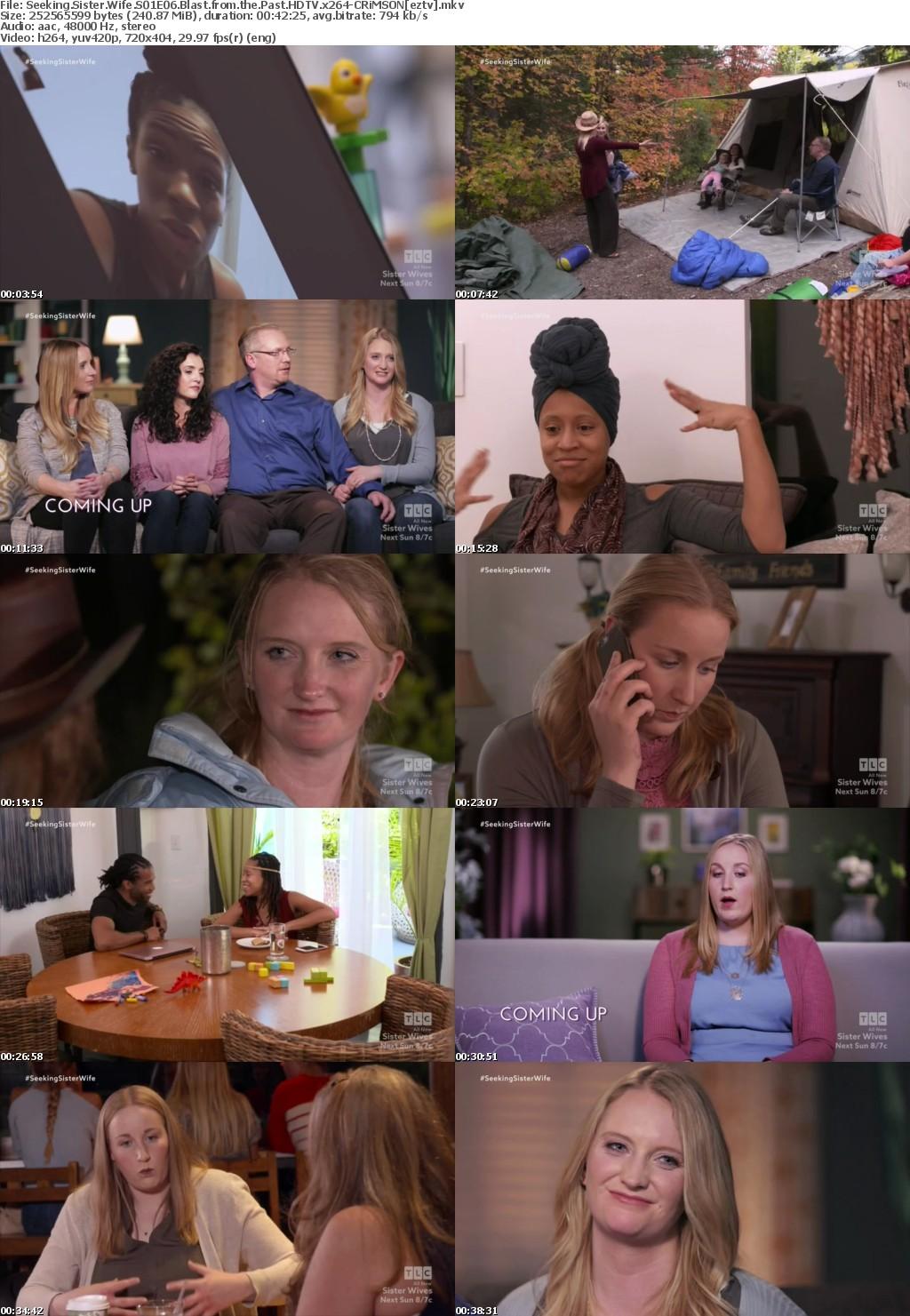 Seeking Sister Wife S01E06 Blast from the Past HDTV x264-CRiMSON