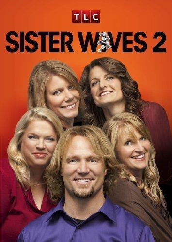 Sister Wives S13E02 480p x264-mSD