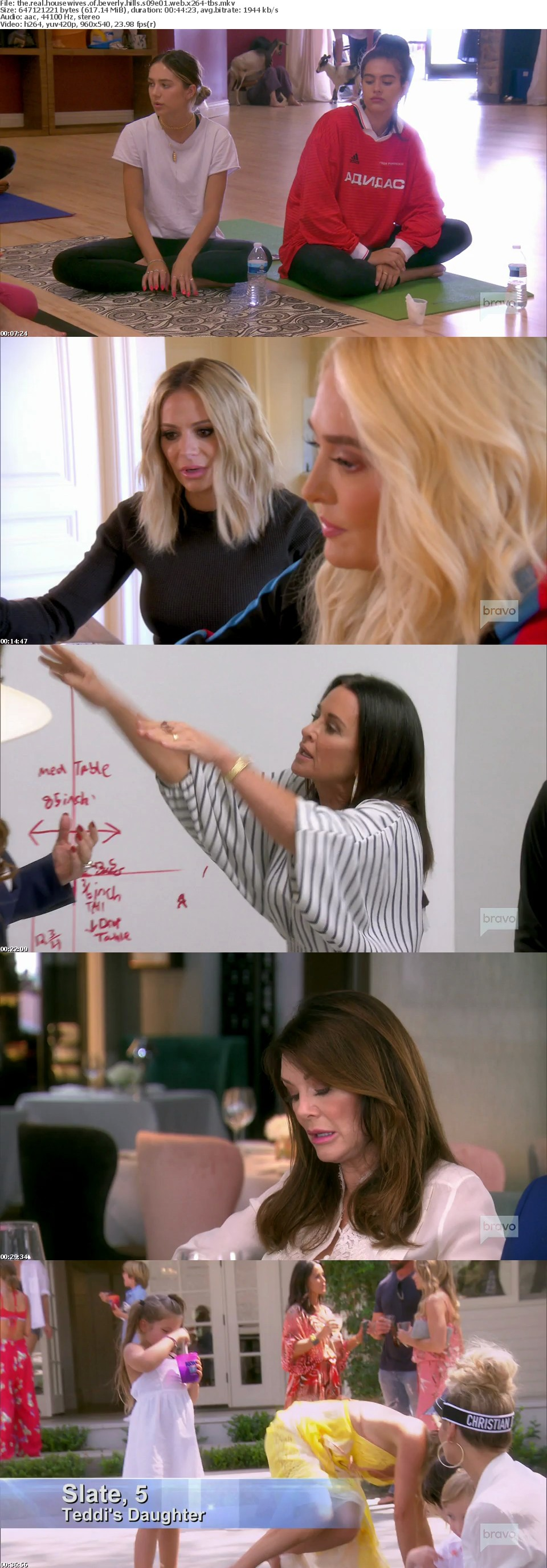The Real Housewives of Beverly Hills S09E01 WEB x264-TBS