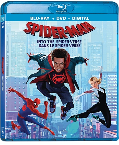 Spider-Man Into the Spider-Verse (2018) 720p Web-DL Dual Audio Eng Hindi Cleaned ESubs-DLW