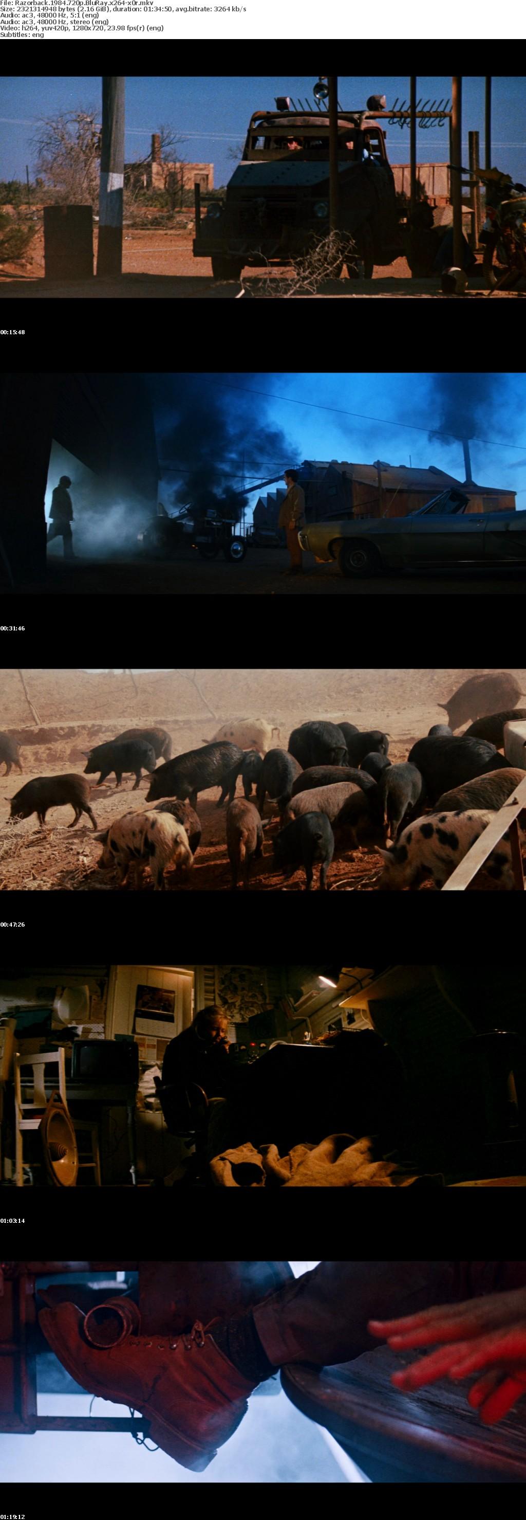 Razorback 1984 720p BluRay x264-x0r