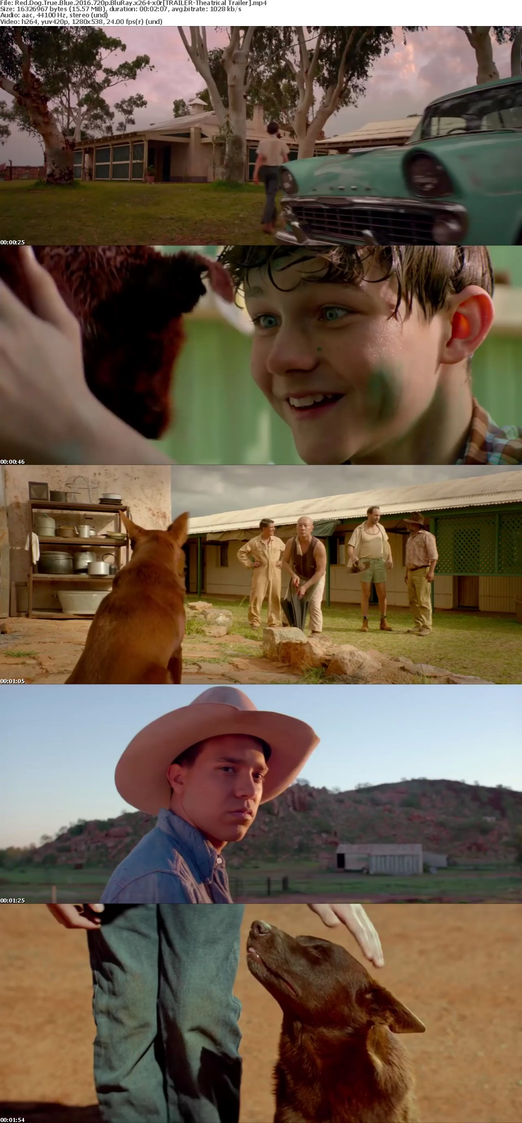 Red Dog True Blue 2016 720p BluRay x264-x0r