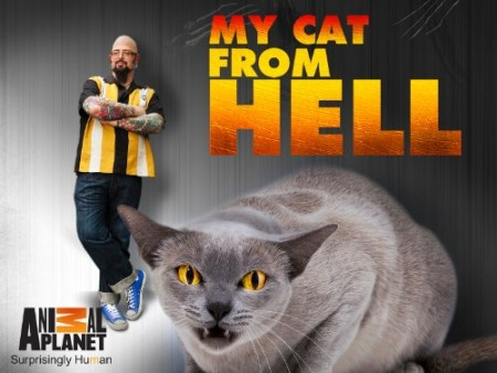 My Cat From Hell S06E03 Godzilla Attacks WEB x264-GIMINI
