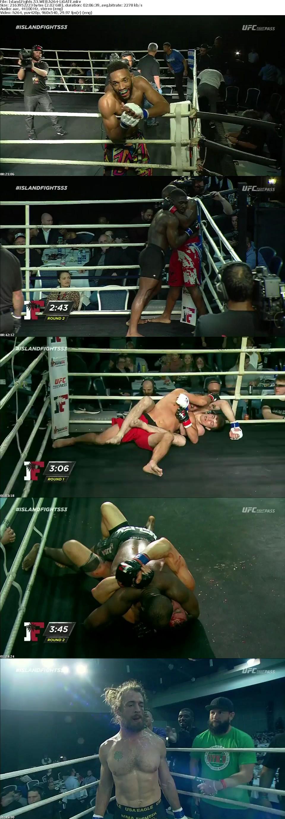 Island Fights 53 WEB h264-LiGATE