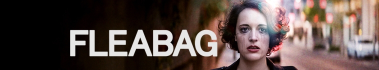 Fleabag S02E06 WEB h264-LiGATE