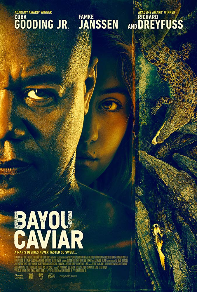 Bayou Caviar 2018 1080p BluRay H264 AAC-RARBG